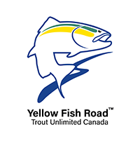 Yellow Fish Road logo
